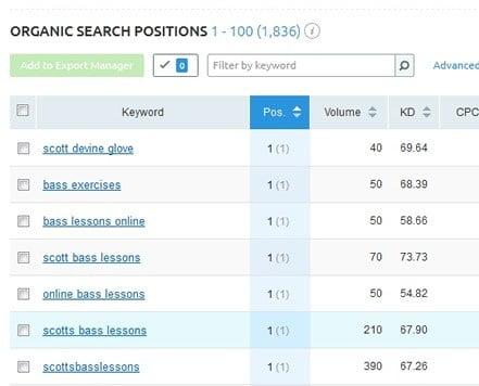 Search Engine Optimisation Keywords Report
