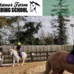Manor Farm Riding School website design